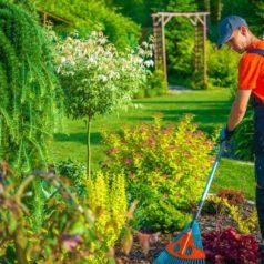 gardening services luton