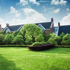 landscaping services luton